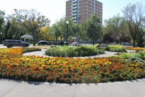 Central Park-Transition Area neighborhood-Regina Real Estate Shop